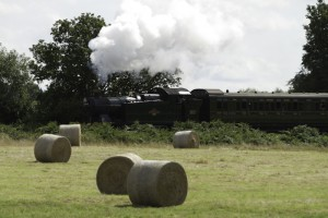 Bluebell railway taken from spring farm