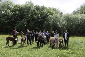 Walk alpacas on a hen party