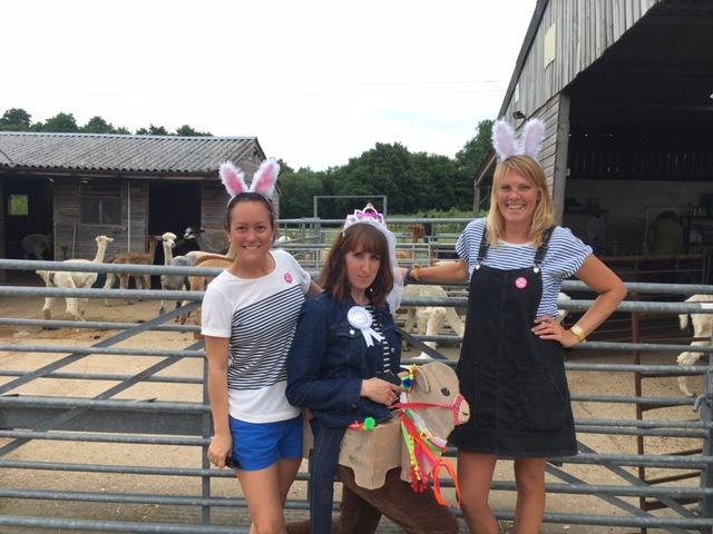 alpaca hen party