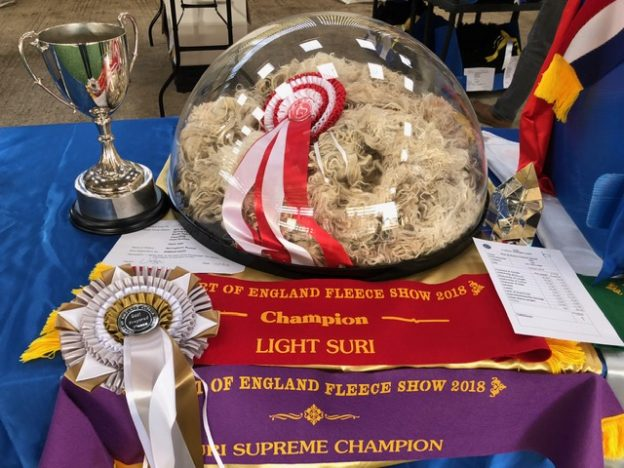 Supreme Champion Suri Fleece