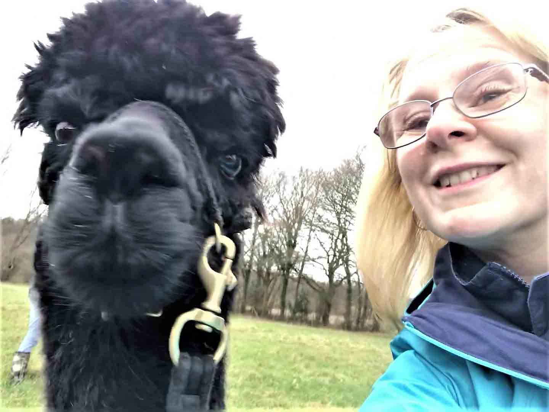 Alpaca selfie on alpaca walk